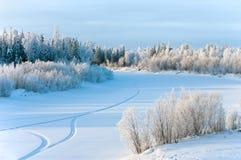 Horizontal de l'hiver. Photos libres de droits