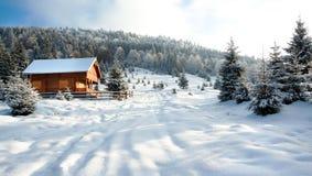 Horizontal de l'hiver
