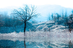 Horizontal de l'hiver Photo stock