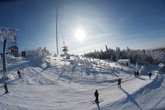 Horizontal de l'hiver Photos libres de droits