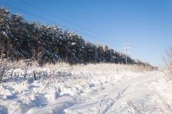 Horizontal de l'hiver Images libres de droits