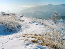 Horizontal de l'hiver (9) Photographie stock libre de droits