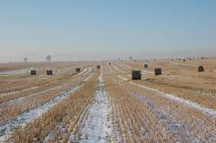 Horizontal de l'hiver avec des paquets Photo libre de droits