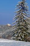 Horizontal de l'hiver avec l'église enrichie par sapin de neige Image stock