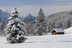 Horizontal de l'hiver avec la neige Photo stock