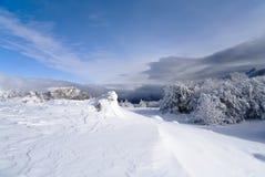 Horizontal de l'hiver avec les arbres neigeux Photos libres de droits