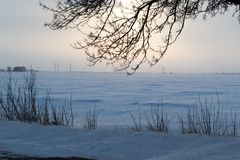 Horizontal de l'hiver Champ de Milou avec des buissons et des branches de l'arbre sur le premier plan crépuscule photo libre de droits