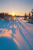 Horizontal de l'hiver. Coucher du soleil. Images libres de droits