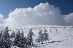Horizontal de l'hiver dans Carpathiens Image libre de droits