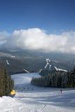 Horizontal de l'hiver de Carpathiens Images libres de droits