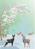 Horizontal de l'hiver de couleur avec des deers Image libre de droits