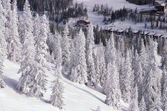 Horizontal de l'hiver de Milou Photos libres de droits