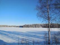 Horizontal de l'hiver en Carélie Photographie stock libre de droits