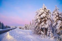 Horizontal de l'hiver en Laponie Image libre de droits