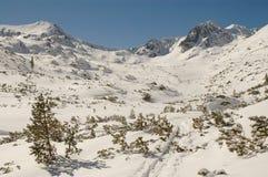 Horizontal de l'hiver en montagne de Retezat, Roumanie photos stock