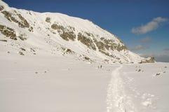 Horizontal de l'hiver en montagne de Retezat, Roumanie images stock