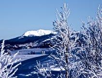 Horizontal de l'hiver en Norvège Image libre de droits