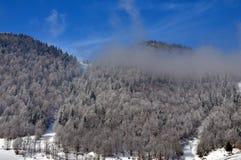 Horizontal de l'hiver en Roumanie Photos stock