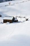 Horizontal de l'hiver en Roumanie Photo libre de droits