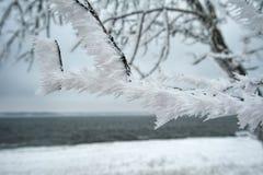 Horizontal de l'hiver en Russie Image stock