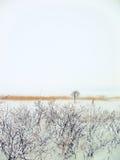 Horizontal de l'hiver (fond) Images libres de droits