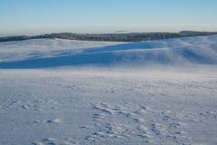 Horizontal de l'hiver Jour ensoleillé Baisse d'hiver Les couleurs lumineuses Paysage simple Chemin forestier de forêt d'hiver fil Image stock