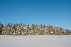 Horizontal de l'hiver Jour ensoleillé Baisse d'hiver Les couleurs lumineuses Paysage simple Chemin forestier de forêt d'hiver fil Photographie stock