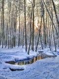 Horizontal de l'hiver, Russie photo libre de droits