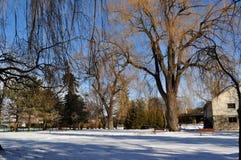 Horizontal de l'hiver, stationnement Image libre de droits