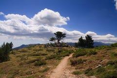 Horizontal de la Corse Images libres de droits