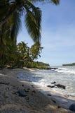 Horizontal de la Guyane française Photographie stock