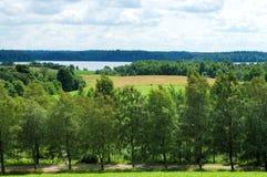 Horizontal de la Lithuanie. Image libre de droits