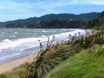 Horizontal de la Nouvelle Zélande Photo stock
