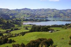 Horizontal de la Nouvelle Zélande Photographie stock libre de droits