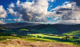 Horizontal de la Nouvelle Zélande Photographie stock