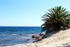 Horizontal de la Sardaigne Image libre de droits