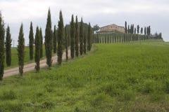 Horizontal de la Toscane Photographie stock libre de droits