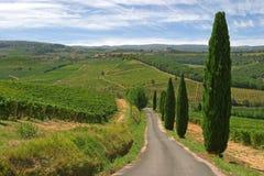 Horizontal de la Toscane Photos libres de droits
