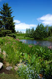 Horizontal de lac Images libres de droits