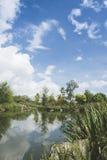 Horizontal de lac Photographie stock