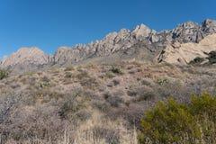 Horizontal de las montañas del órgano abandone el monumento nacional de los picos Fotos de archivo