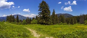 Horizontal de montagne Photographie stock