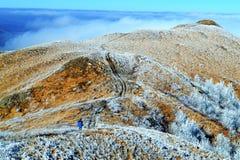 Horizontal de montagne Photo stock
