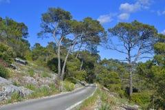 Horizontal de montagne Images libres de droits