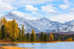 Horizontal de montagne Automne Photo stock