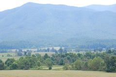 Horizontal de montagne d'été Photos libres de droits