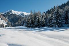 Horizontal de montagne de l'hiver Photo stock