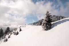 Horizontal de montagne de l'hiver Photographie stock