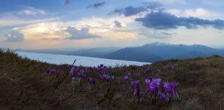 Horizontal de montagne de source Images libres de droits