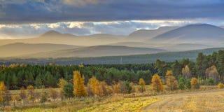Horizontal de montagne en automne photographie stock libre de droits